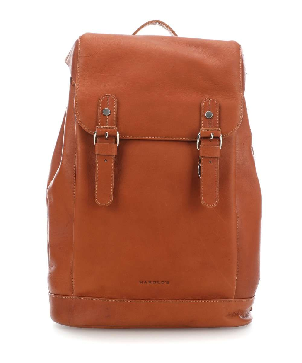 Harold's Campo L Rucksack cognac Preview